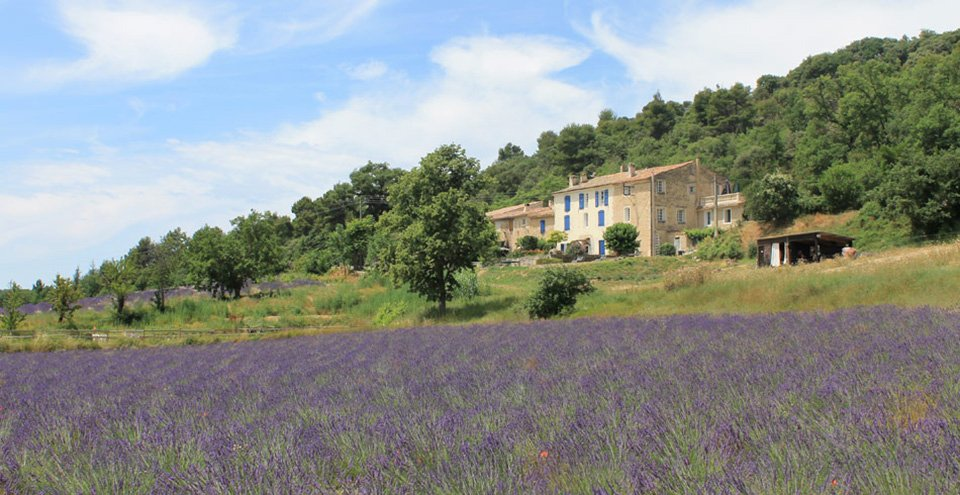Balade en Provence wins 2019 French Cosmetics Award for Best Natural Product